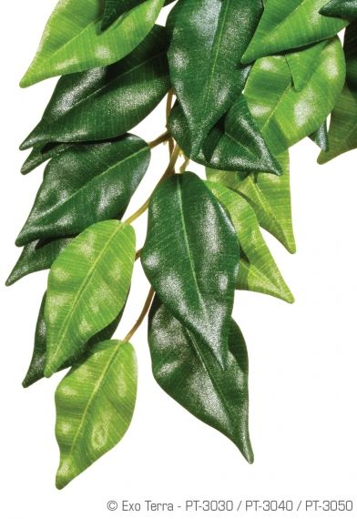 Exo Terra Silk Plant Ficus Medium РТ-3040