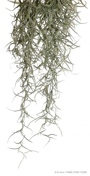 Exo Terra Plant Spanish Moss Large РТ-3092