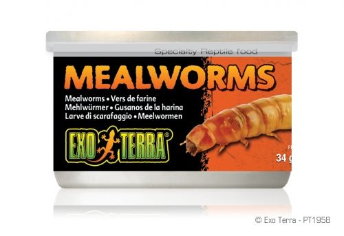 Exo Terra Canned Foods Mealworms PT-1958 34g
