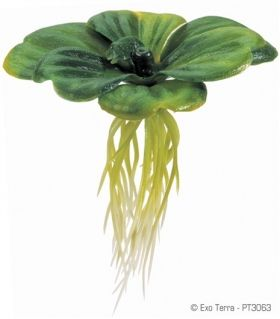 Exo Terra Floating Water Plant Lettuce РТ-3063